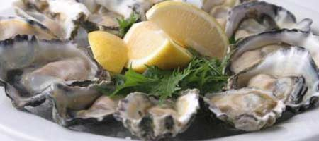 knysna-oysters